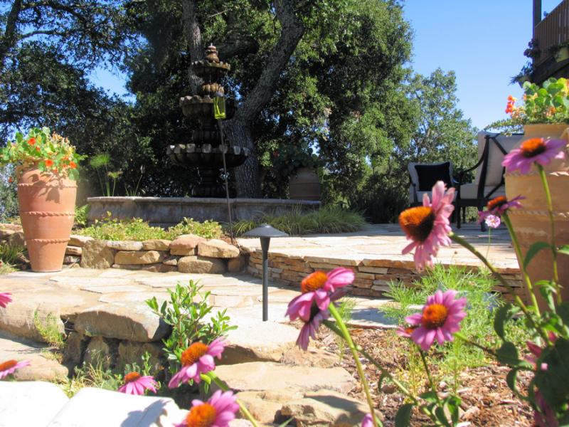 Flagstone steps and retaining walls, with purple echinacea in foreground